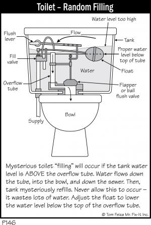 P146 - Toilet - Random Filling